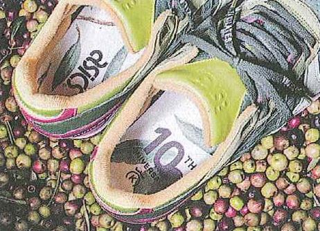 Asics olio di oliva malaspina monte urano sneakers
